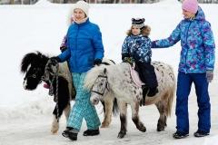 ekskursii-na-pony-ferme