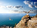 фото со скалами и морем