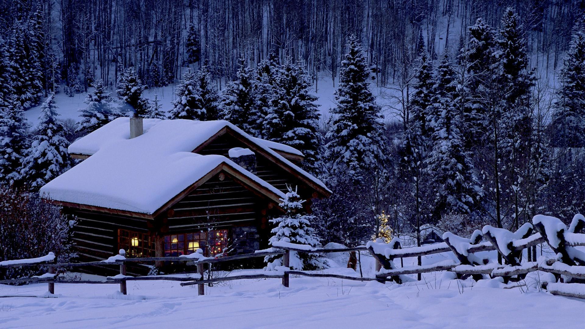 фото с домом в лесу